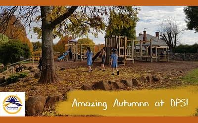 Amazing Autumn at Deloraine Primary School