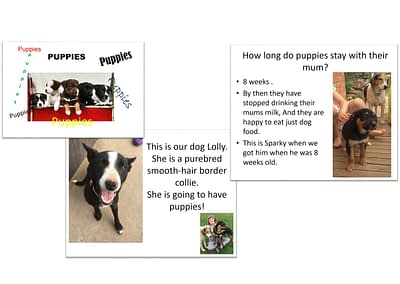 Puppy PowerPoint by Kirraley