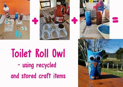 Toilet roll owl craft - All ages