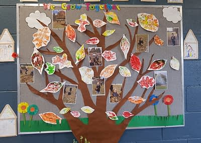display in a classroom of a tree and photos