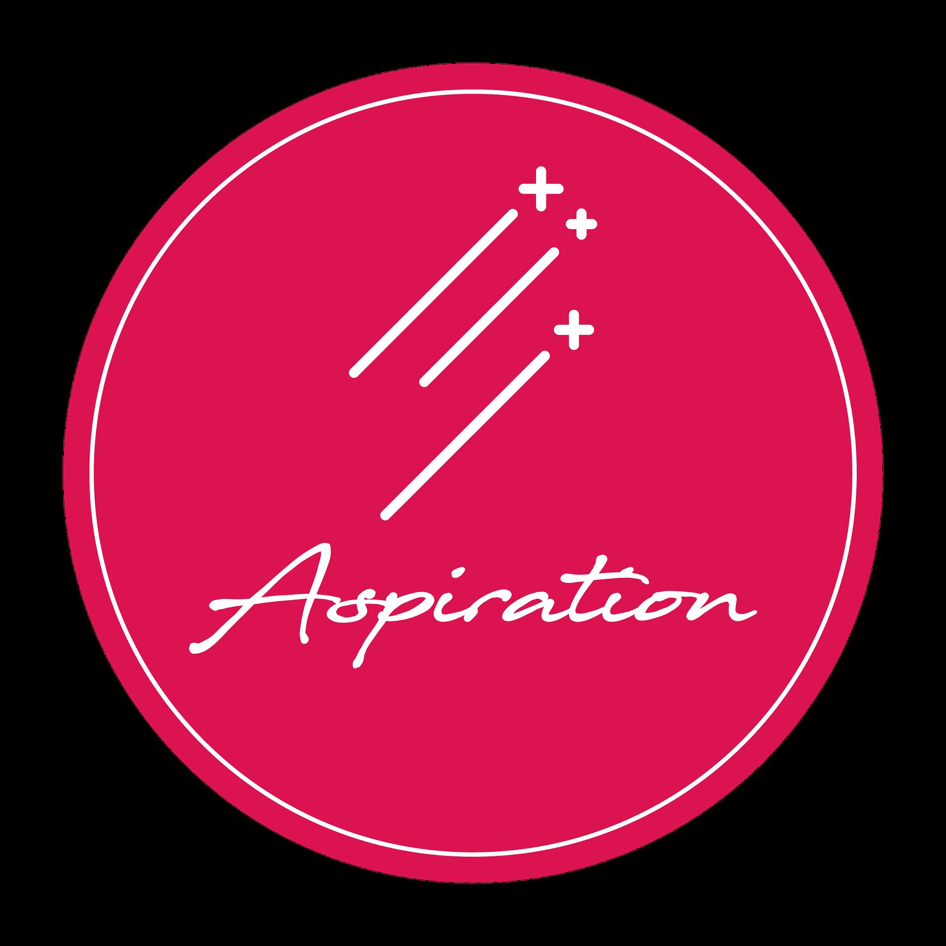 aspiration value logo