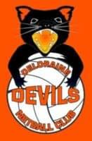 Deloraine Devils Netball Club