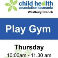 Westbury Play Gym